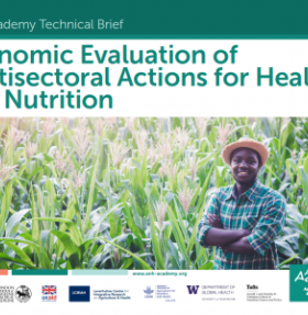 Working Group on Economic Evaluation of Agriculture, Food and Livelihood Strategies for Health and Nutrition
